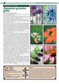 Nr. 1-2013 - Kirken i Nedre Eiker - Page 4