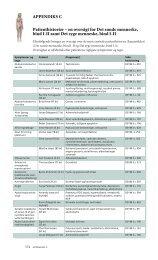 Appendiks C patienthistorier – en oversigt for det sunde ... - Gad