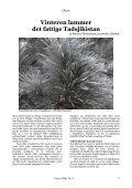 Download her. - Centralasiatisk Selskab - Page 5
