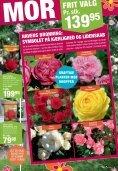tILBUD - Plante .dk - PlanteRiget - Page 3