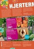 tILBUD - Plante .dk - PlanteRiget - Page 4
