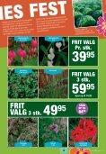 tILBUD - Plante .dk - PlanteRiget - Page 5