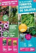 tILBUD - Plante .dk - PlanteRiget - Page 6
