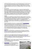 Økodyrkningsvejledning for blomkål 2007 - LandbrugsInfo - Page 5