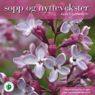 Nr 2 - 2011 i sin helhet - Norges sopp- og nyttevekstforbund