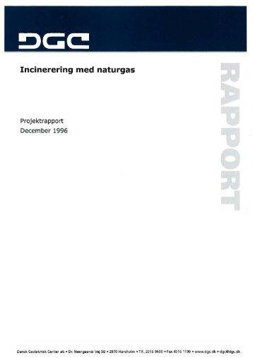 Download publikationen - Dansk Gasteknisk Center