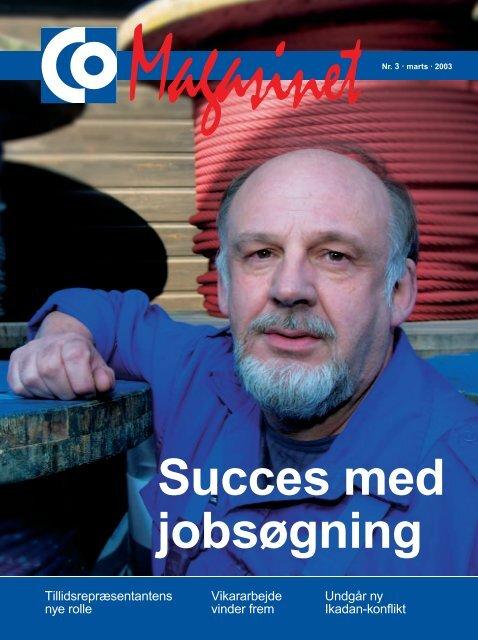 Succes - CO-industri