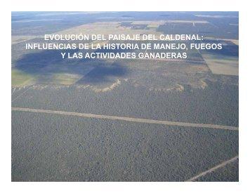 EVOLUCIÓN DEL PAISAJE DEL CALDENAL ... - The Jornada
