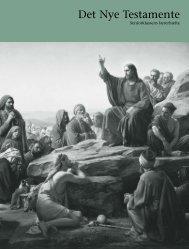 Det Nye Testamente: Seniorklassens lærerhæfte - The Church of ...