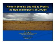 Remote Sensing and GIS to Predict the Regional ... - The Jornada