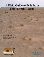 A Field Guide to Pedoderm and Pattern Classes - The Jornada