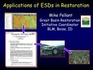 Applications of ESDs in Restoration