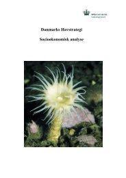 Danmarks Havstrategi Socioøkonomisk analyse - Naturstyrelsen