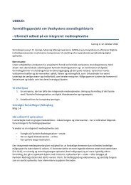 Udbud i pdf - Meaning Making Experience