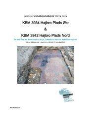 Udgravningsberetning Højbro Plads (KBM3934 og 3942) - uden bilag