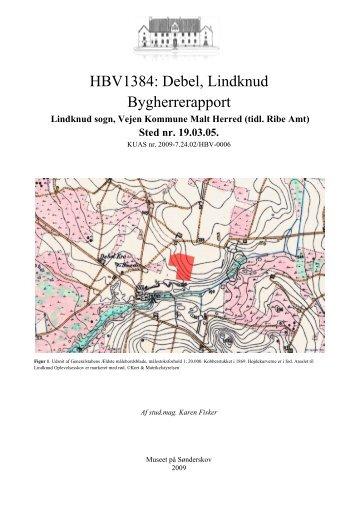 HBV1384: Debel, Lindknud Bygherrerapport