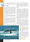 verstärkte Zuwanderung auf - vamos - Seite 6