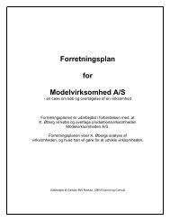 Forretningsplan for Modelvirksomhed A/S