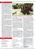 folketingsvalg 2001 - Dansk Folkeparti - Page 2