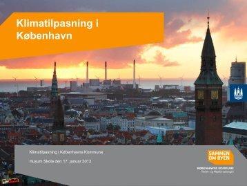 Klimatilpasning i København - Brønshøj-Husum lokaludvalg ...