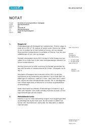 Notat fra Rambøll vedr. fjernelse af rust - Herning Kommune