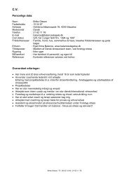 Erhvers CV/erfaring - Balance