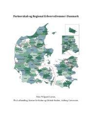 Partnerskab og Regional Erhvervsfremme i ... - Erhvervsstyrelsen
