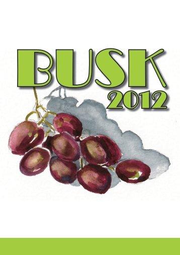 Hent BUSK materialet for 2012 nu - BUSK gudstjenester