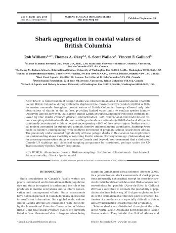 Shark aggregation in coastal waters of British Columbia.