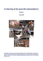 Evaluering af det generelle ammoniakkrav - Miljøministeriet
