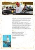 Daar zit muziek in! - Tropenmuseum - Page 2