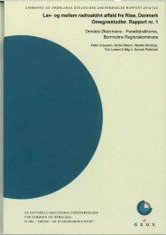 Rapport nr. 1: Område Østermarie - Geus