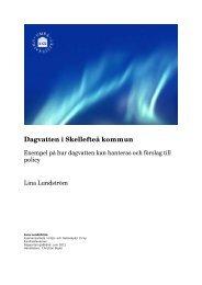 Dagvatten i Skellefteå 2011 examensarbete Lina Lundström