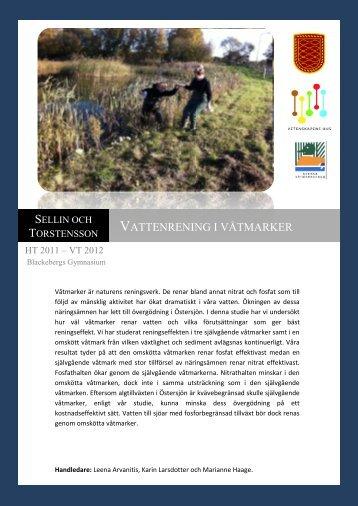 Vattenrening i våtmarker - Förbundet Unga Forskare