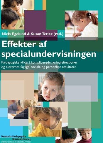 Effekter af specialundervisningen