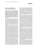 PGC-1α: Looking behind the Sweet Treat for Porphyria • SHORT ... - Page 4