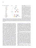 PGC-1α: Looking behind the Sweet Treat for Porphyria • SHORT ... - Page 5