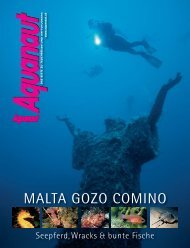 35_Malta Aufmacher (Page 1)