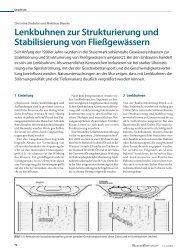 Lenkbuhnen zur Strukturierung und Stabilisierung von ...