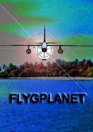 Flygplanet - Läs en bok