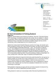 Kommunebrev om Fishing Zealand - Guldborgsund Kommune