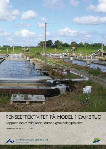 Renseeffektivitet på model 1 dambrug – Rapportering af WP4 under ...