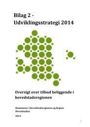 Bilag 2_Udviklingsstrategi 2014.pdf - Rammeaftale ...
