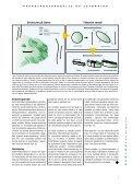 Geologi Nyt fra GEUS nr. 3, november 2000 - Page 7