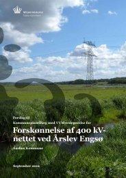 Forskønnelse af 400 kV- nettet ved Årslev Engsø