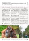 Se katalog - Stjernegaard Rejser - Page 7