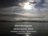 Årsrapport 2012 - Fredrikstad kommune