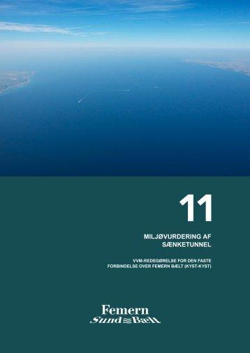 11 Miljøvurdering af sænketunnel