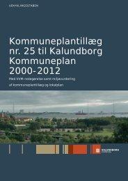 Kommuneplantillæg nr. 25 til Kalundborg Kommuneplan 2000-2012