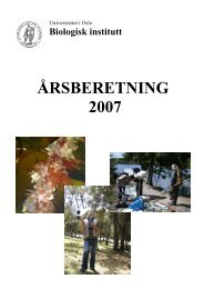 2007 - Det matematisk-naturvitenskapelige fakultet - Universitetet i ...